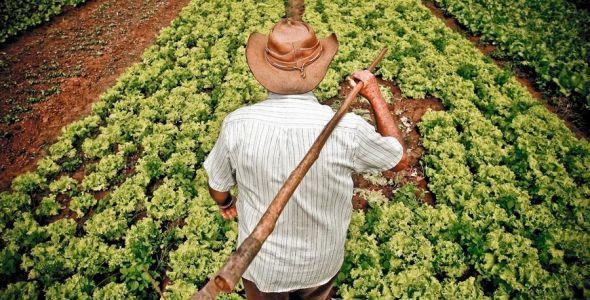 Governo de SC sanciona lei que isenta micro produtor rural de ICMS