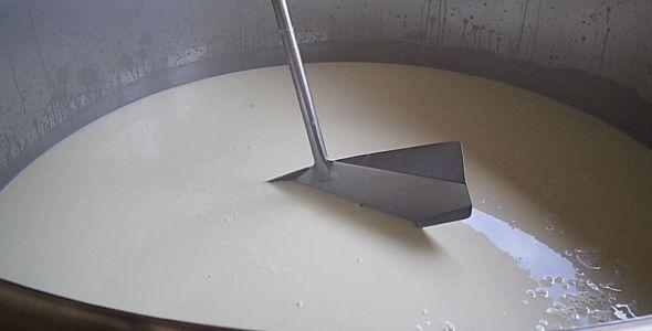 Importa��es contribuem para a queda do pre�o do leite em Santa Catarina
