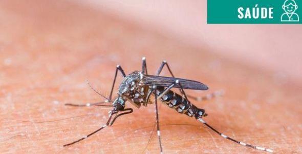 Pesquisadores descrevem primeiro caso de glaucoma congênito decorrente do vírus zika