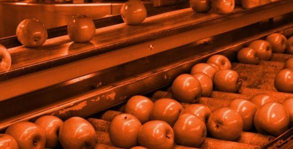 Pomi Frutas renegocia dívida de 56 milhões com BRDE
