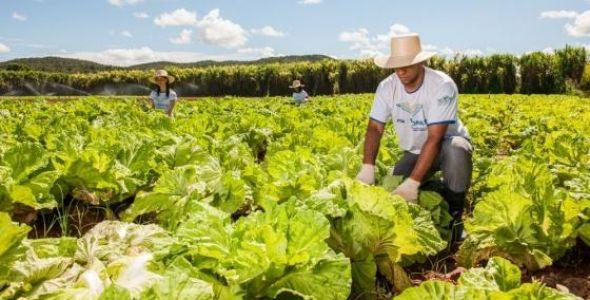 Senar SC capacita mais de quatro mil produtores rurais com cursos gratuitos