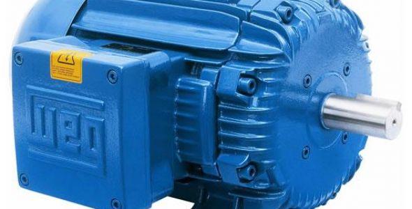 Fabricante de motores Weg registra queda no lucro líquido