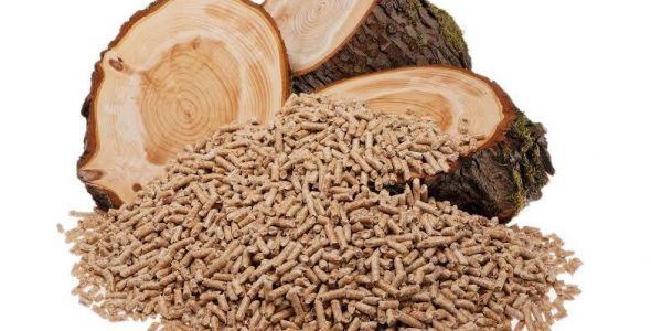 Demanda por fonte de energia alternativa movimenta exportações de pellets