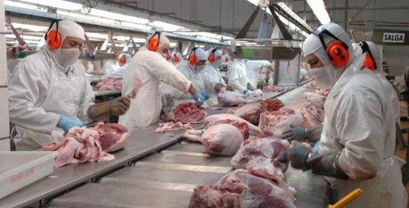 Santa Catarina tem queda nas exportações de suínos e aves em abril