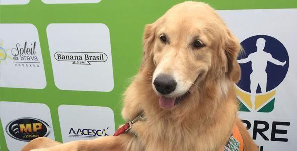 Run4More arrecada R$ 20 mil para Escola de Cães Guia Helen Keller