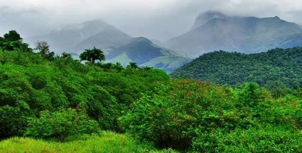Recursos de compensação ambiental poderão ser utilizados nas Unidades de Conservação