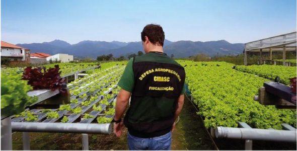 Decreto regulamenta uso de agrotóxicos no estado