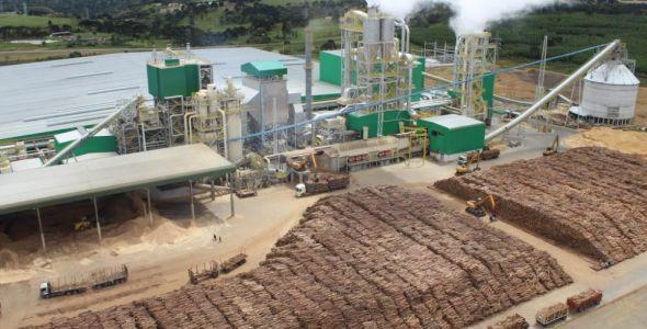 Berneck retoma projeto de investir R$ 1,2 bilhão em Lages
