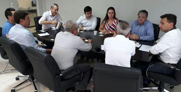 Celesc e EDP apresentam investimento de R$ 1,26 bi em linhas de transmissão