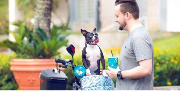 Plasvale lança e-commerce voltado para o mercado pet