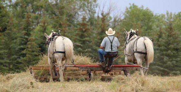 SENAR/SC oferece 277 treinamentos para profissionais do meio rural