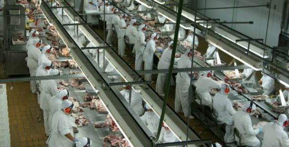 Santa Catarina exporta 105,4 mil toneladas de carnes em maio