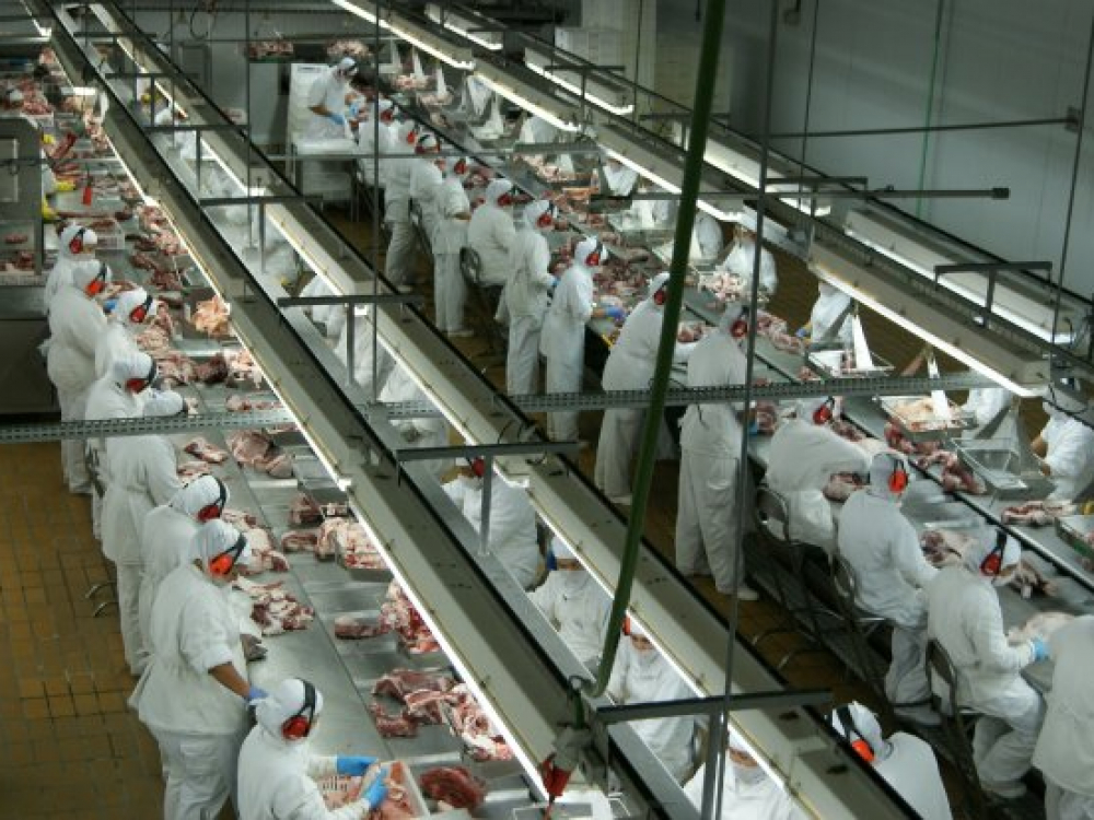 Santa Catarina retoma crescimento nas exportações de carne de frango em maio